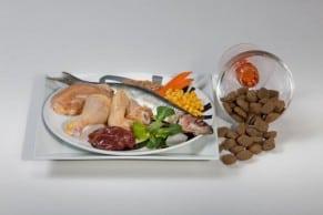Alleinfutter für aktive Hunde und erhöhtem Energiebedarf